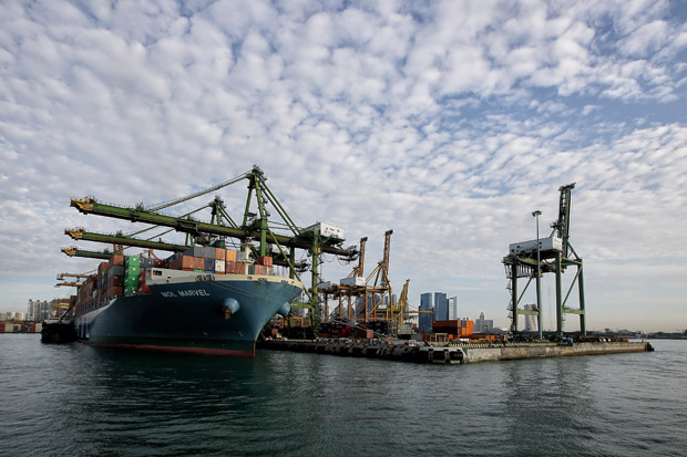 A container vessel docks at the Tanjong Pagar Terminal on January 10, 2014 in Singapore. The terminal, at the Port of Singapore in Singapore, is part of the proposed Trans Pacific Partnership trade agreement.