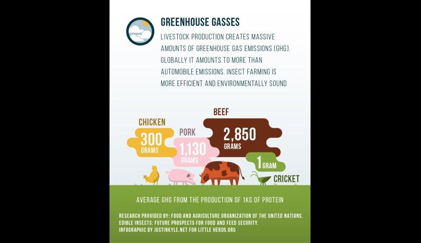 LH GHG Infographic