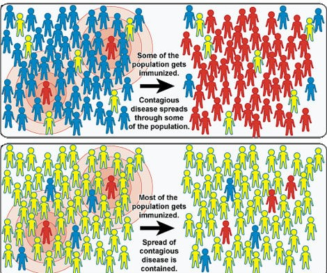 "Part of an image from NIH depicting so-called ""herd immunity."" Measles outbreaks can more easily occur in communities where numbers of immunized people has dropped below a critical mass."