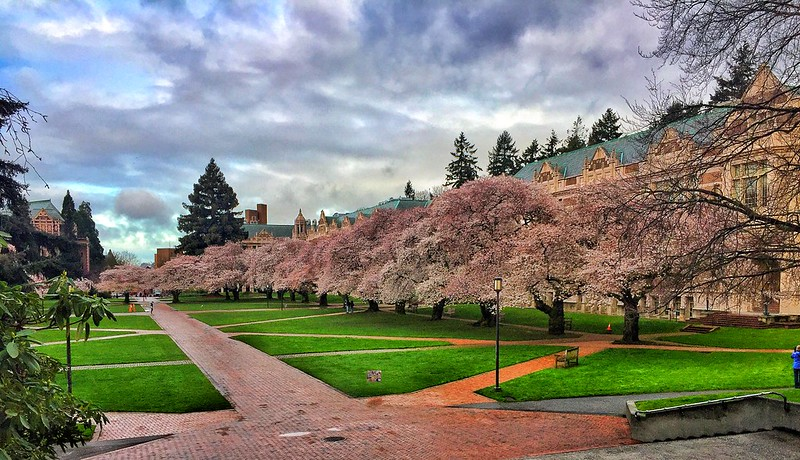 The University of Washington was one of the first large schools in the U.S. to close its campus this past March over the coronavirus.